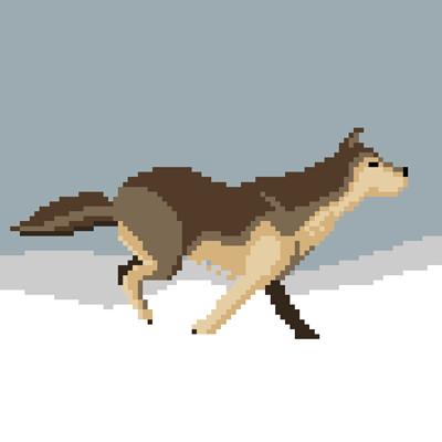 Fernando henrique wolf