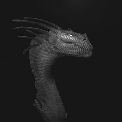 Artur treffner dragon hex concept