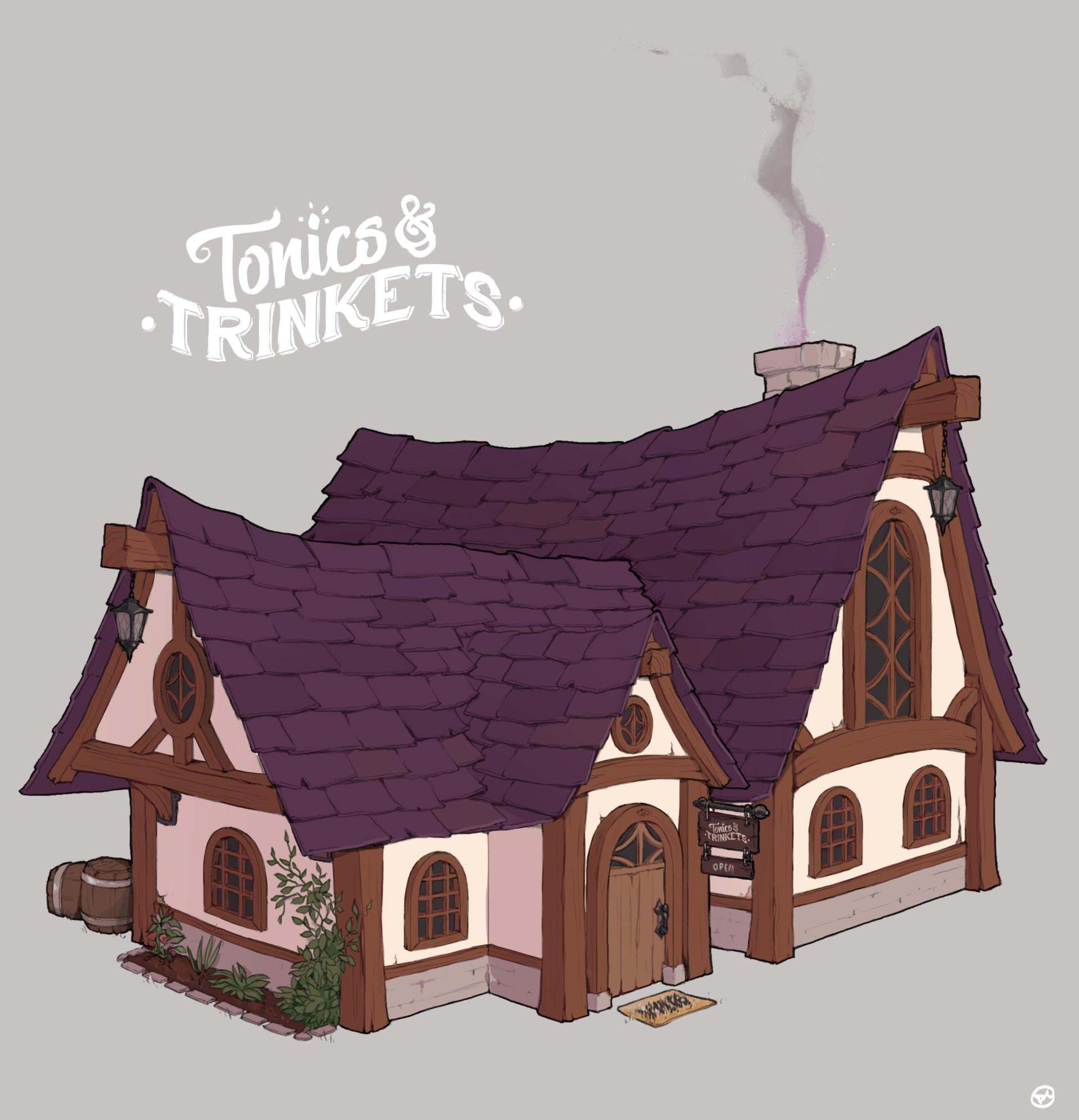 Dani kruse ari tonics trinkets shop