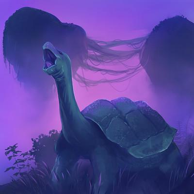 Madeleine bellwoar tortoise