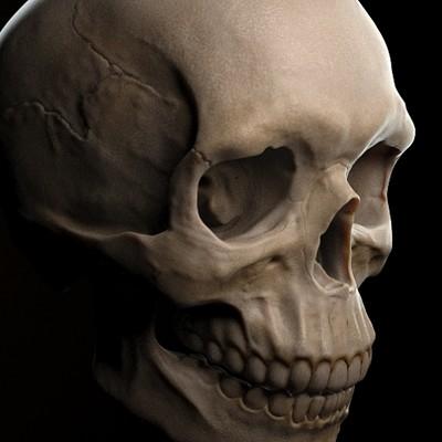 Daniel ripley skull1