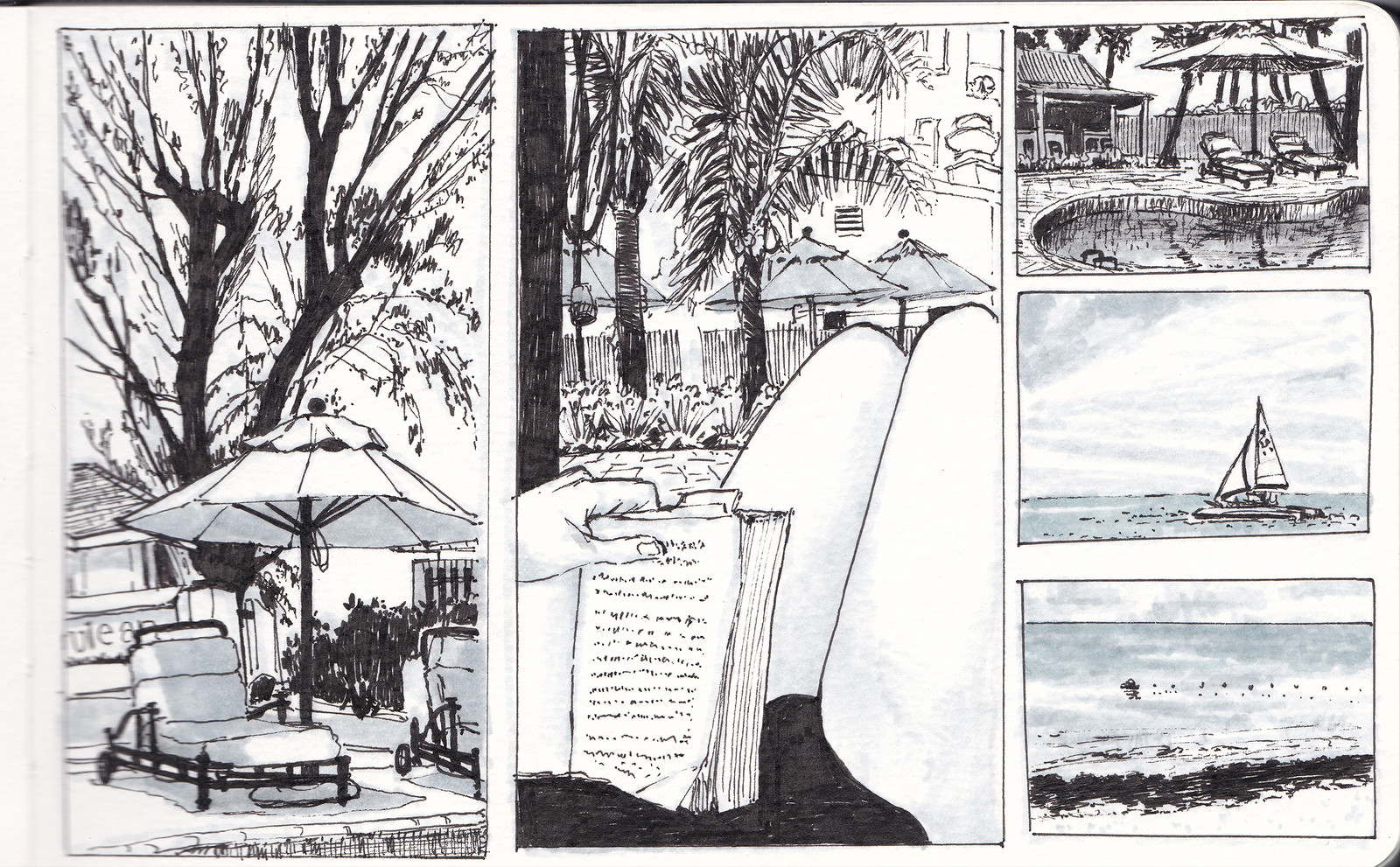 Barbados Honeymoon Sketches