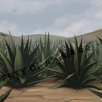 Mauricio morali plantacion v4