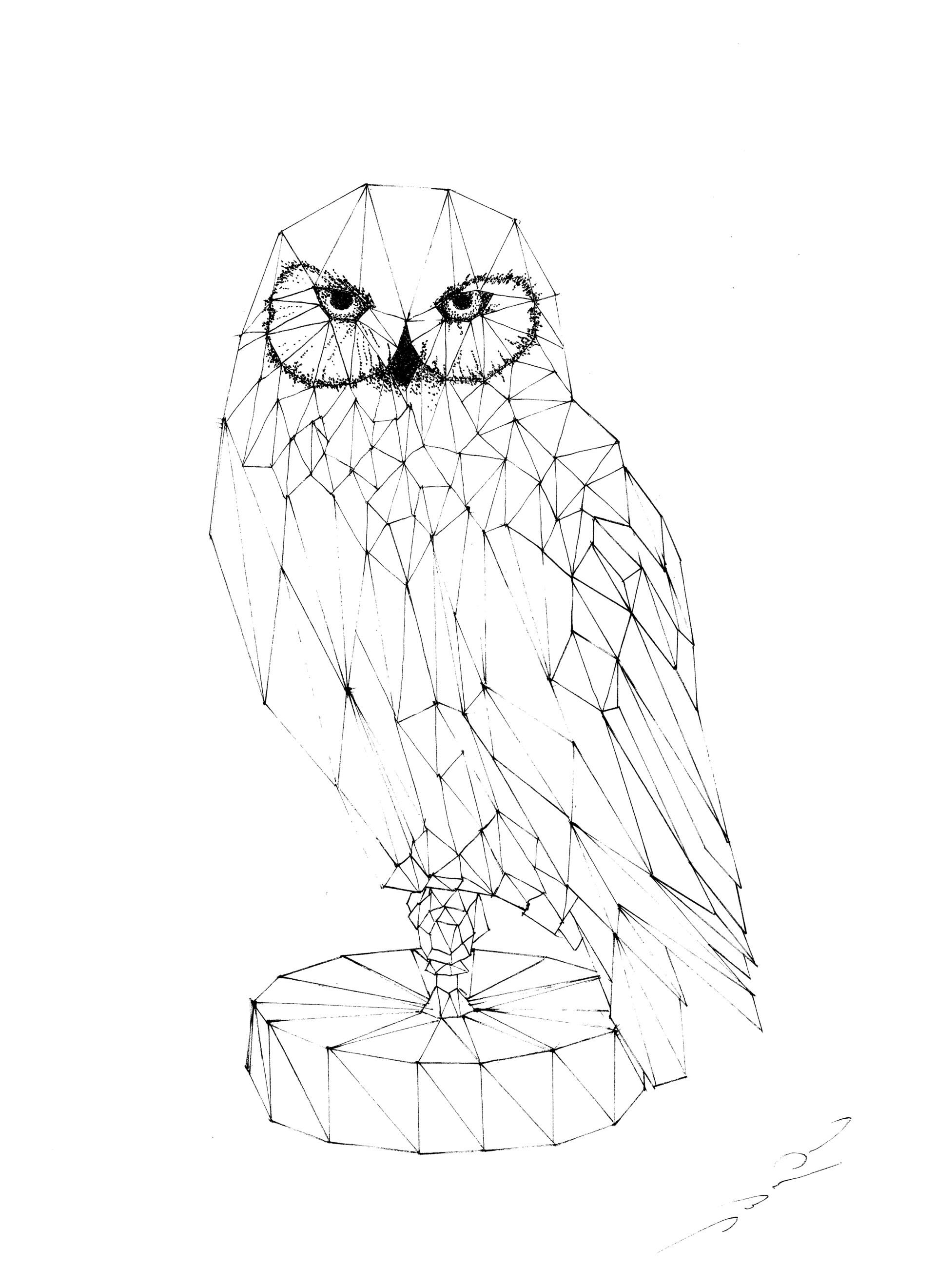 kelvin paul marchioro hand drawings techniques