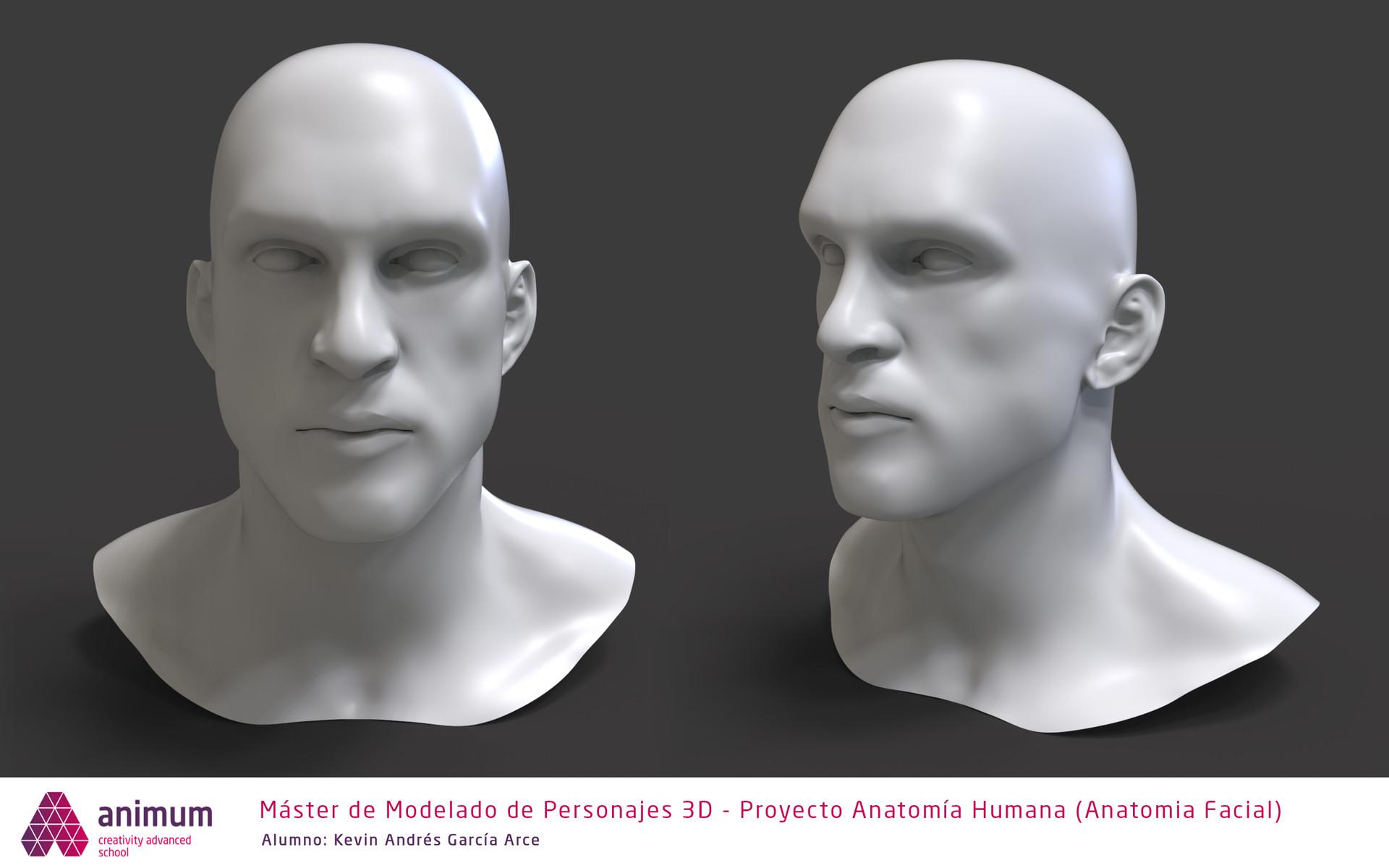 ArtStation - Anatomía Facial - Facial Anatomy, Kevin Garcia