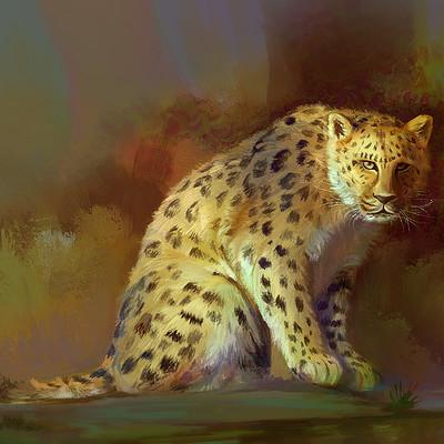 Suresh pydikondala cheetah