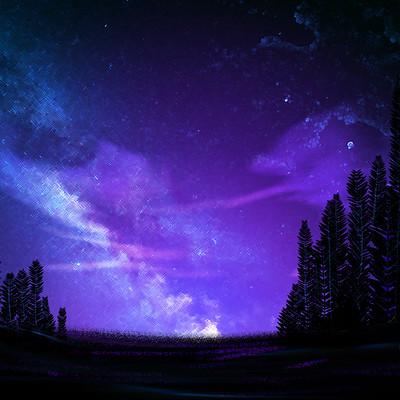 Nathaniel tintinger night sky