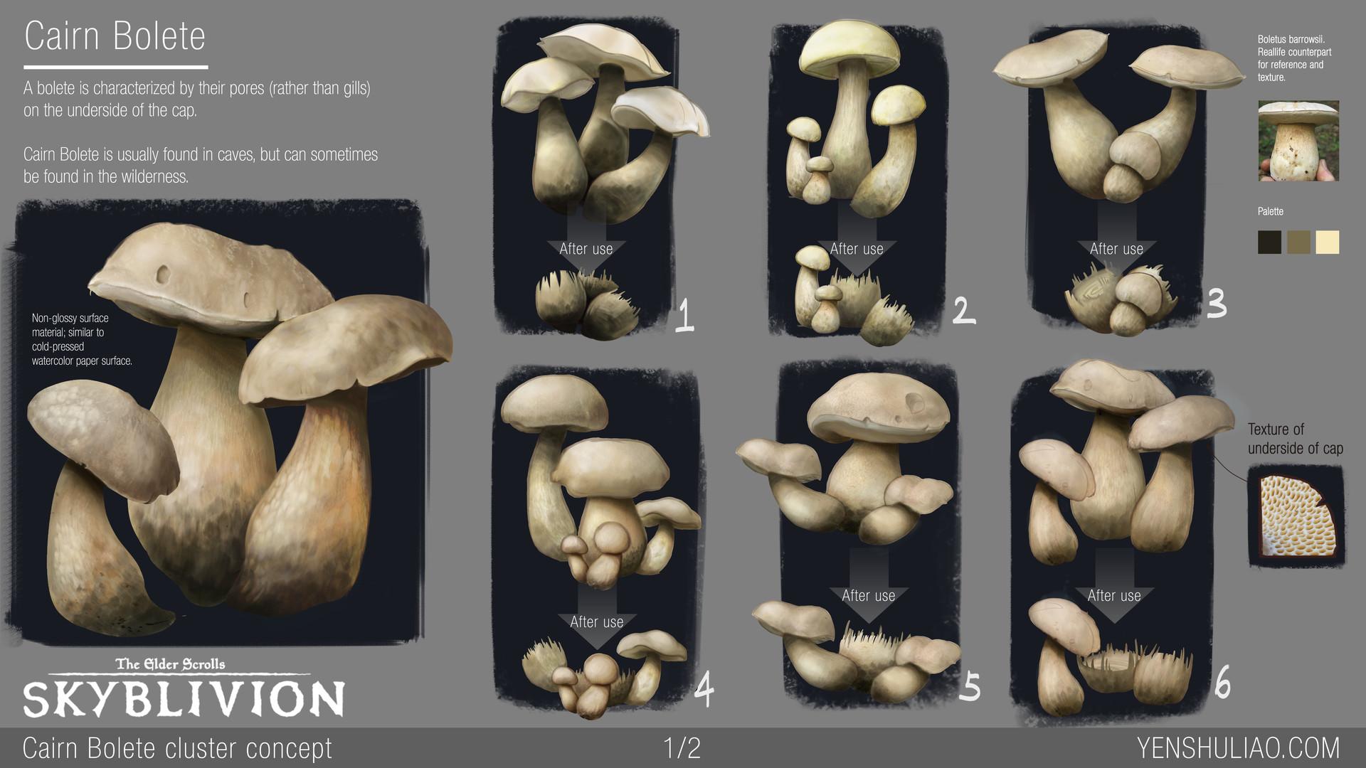 Yen shu liao mushroom environment prop concept yen shu liao skyblivion cairnbolete 01