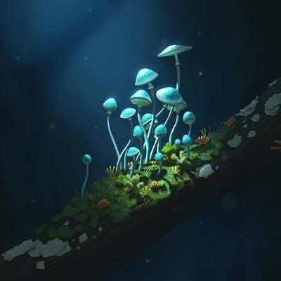 Andrew mcintosh simple mushrooms 02