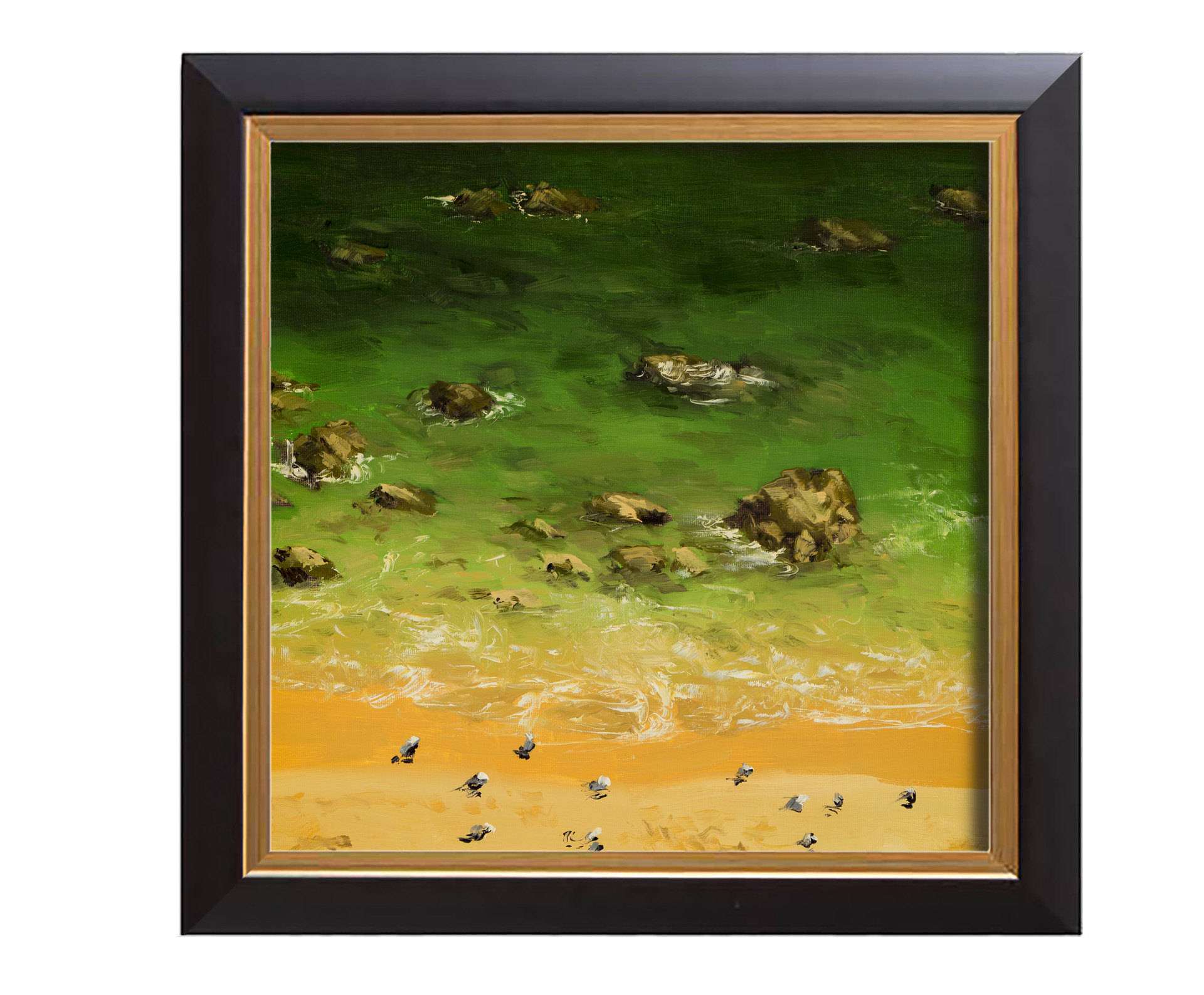 Arthur haas birds beach framed