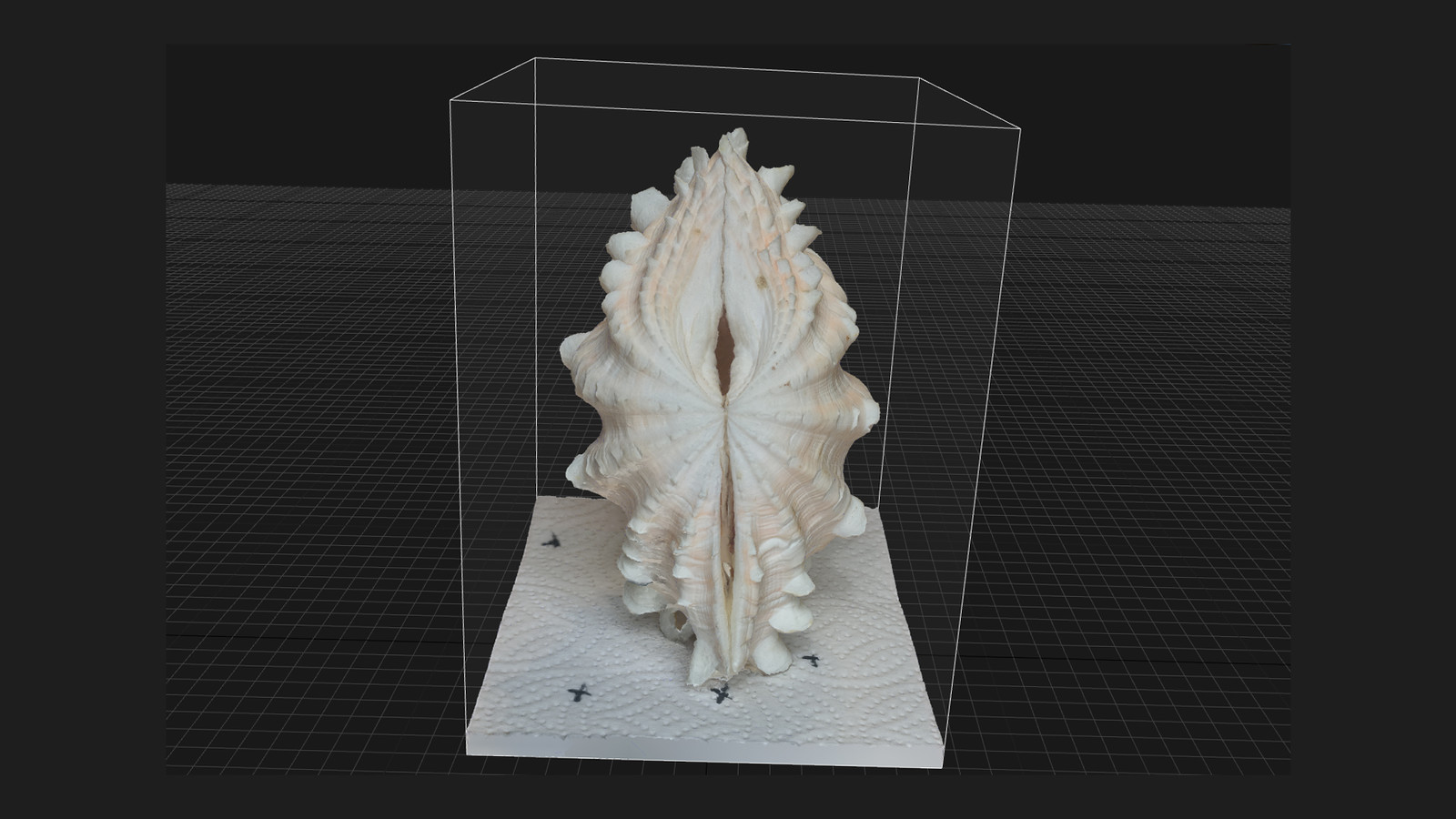 Photogrammery Shell