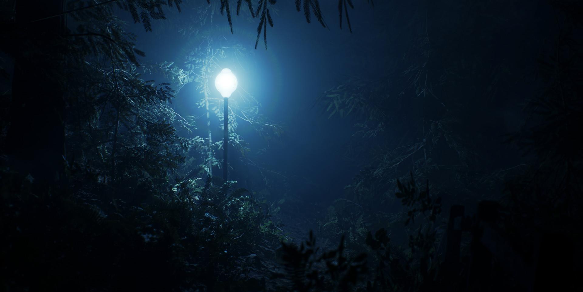 Alexander dracott forestlights 01