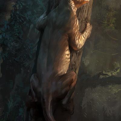 Raph lomotan proailurus