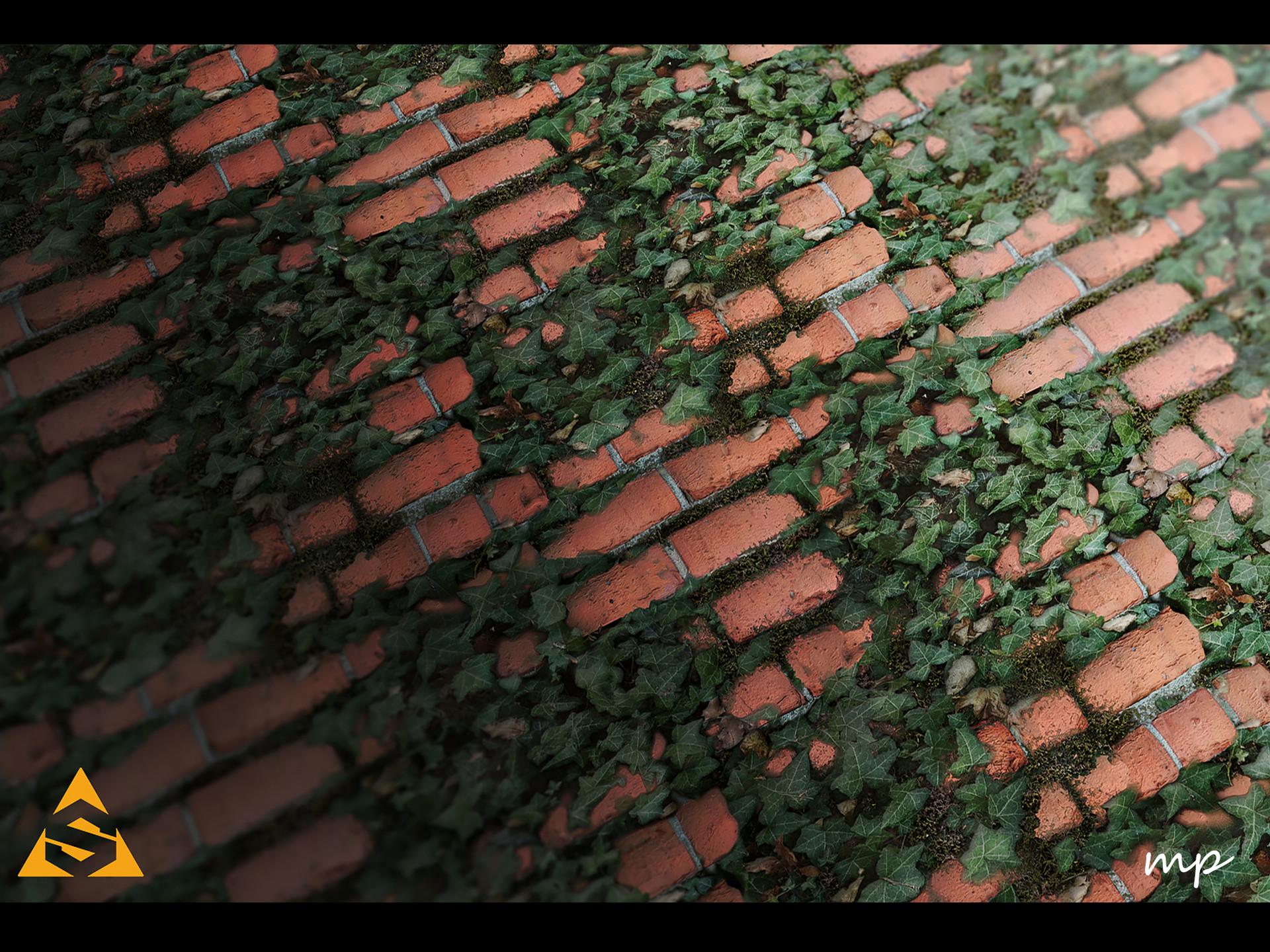 Martin pietras martin pietras brick and ivy