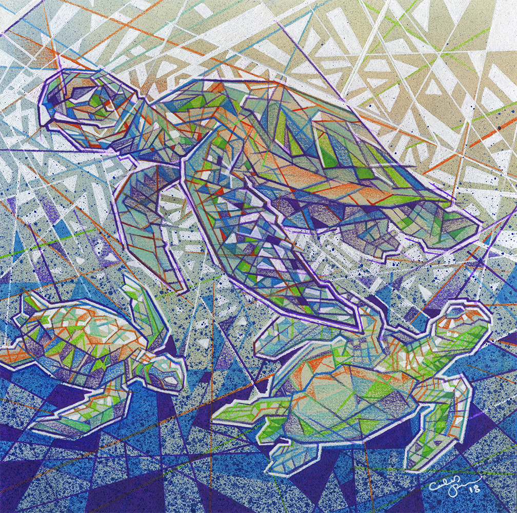 Caleb prochnow caleb prochnow turtles for gallery show web