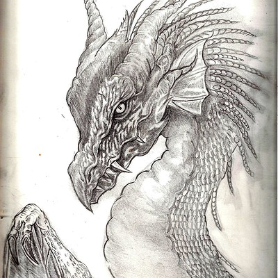 Christopher mckiernan dragon9