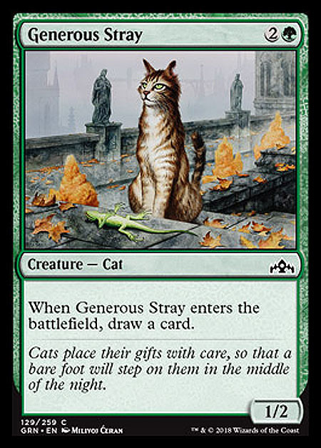 "- ""Generous Stray"", Milivoj Ćeran, 2017.