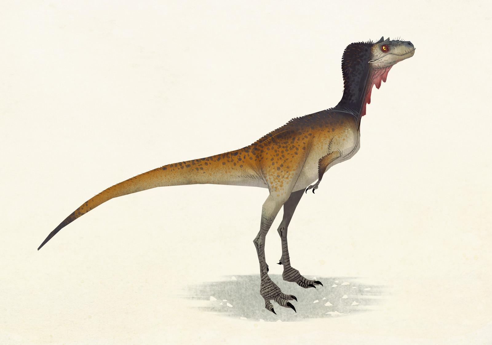 Alectrosaurus olseni
