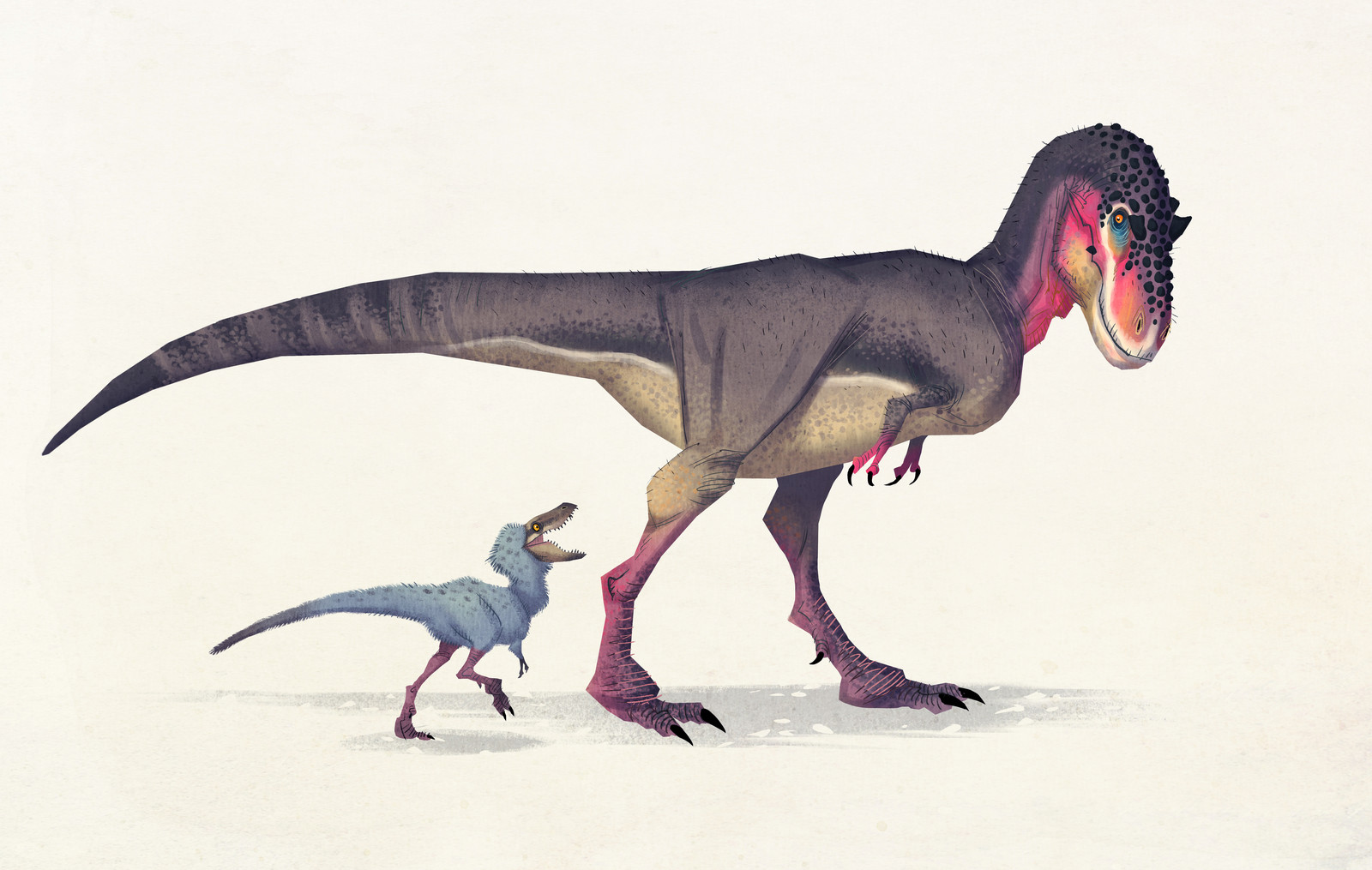 Albertosaurus sarcophagus (with chick)