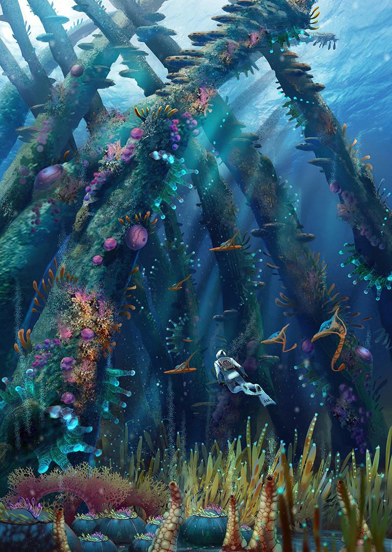 Pat presley coralreefzone thecathedralgrove lorez