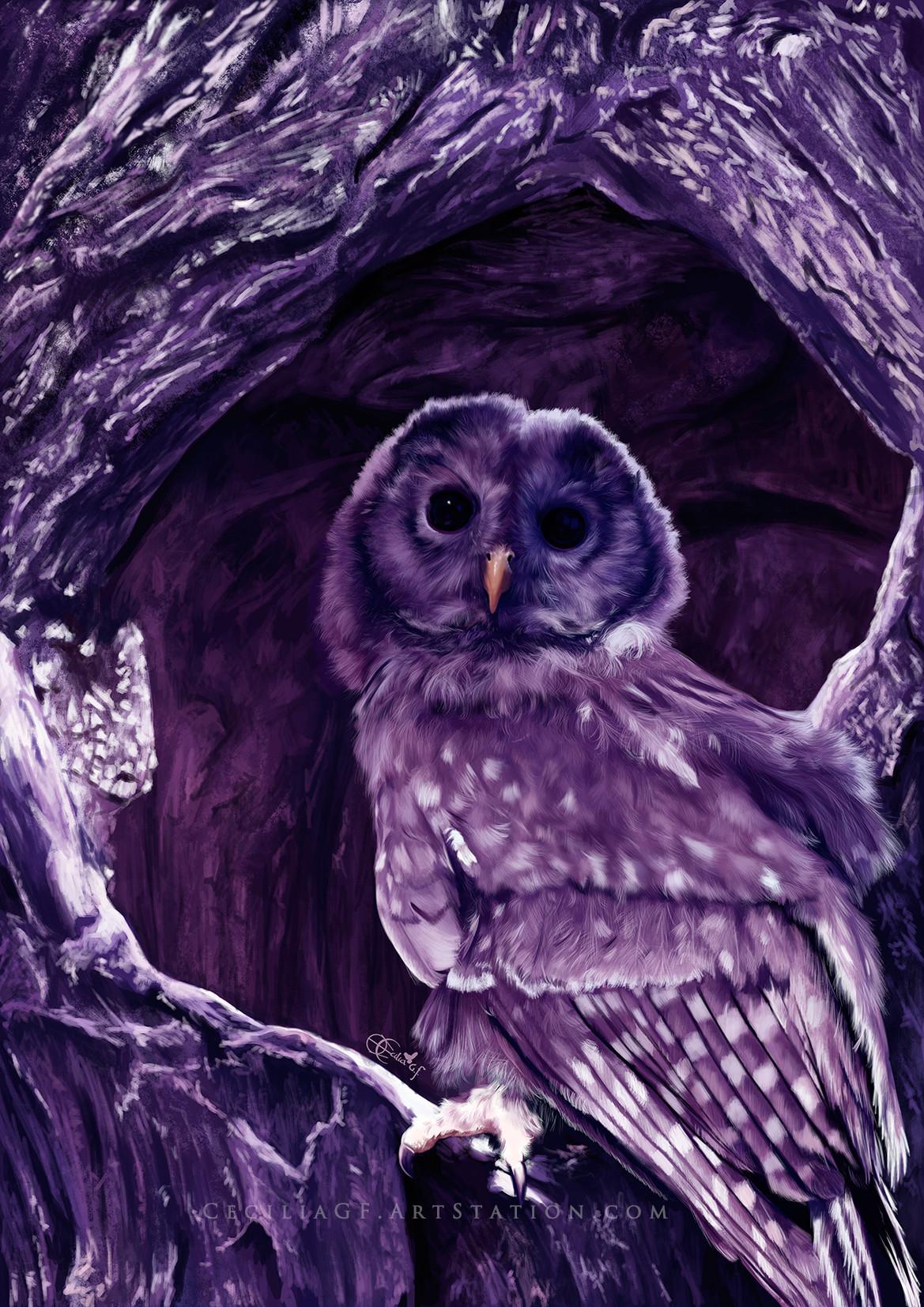 Cecilia g f owl2
