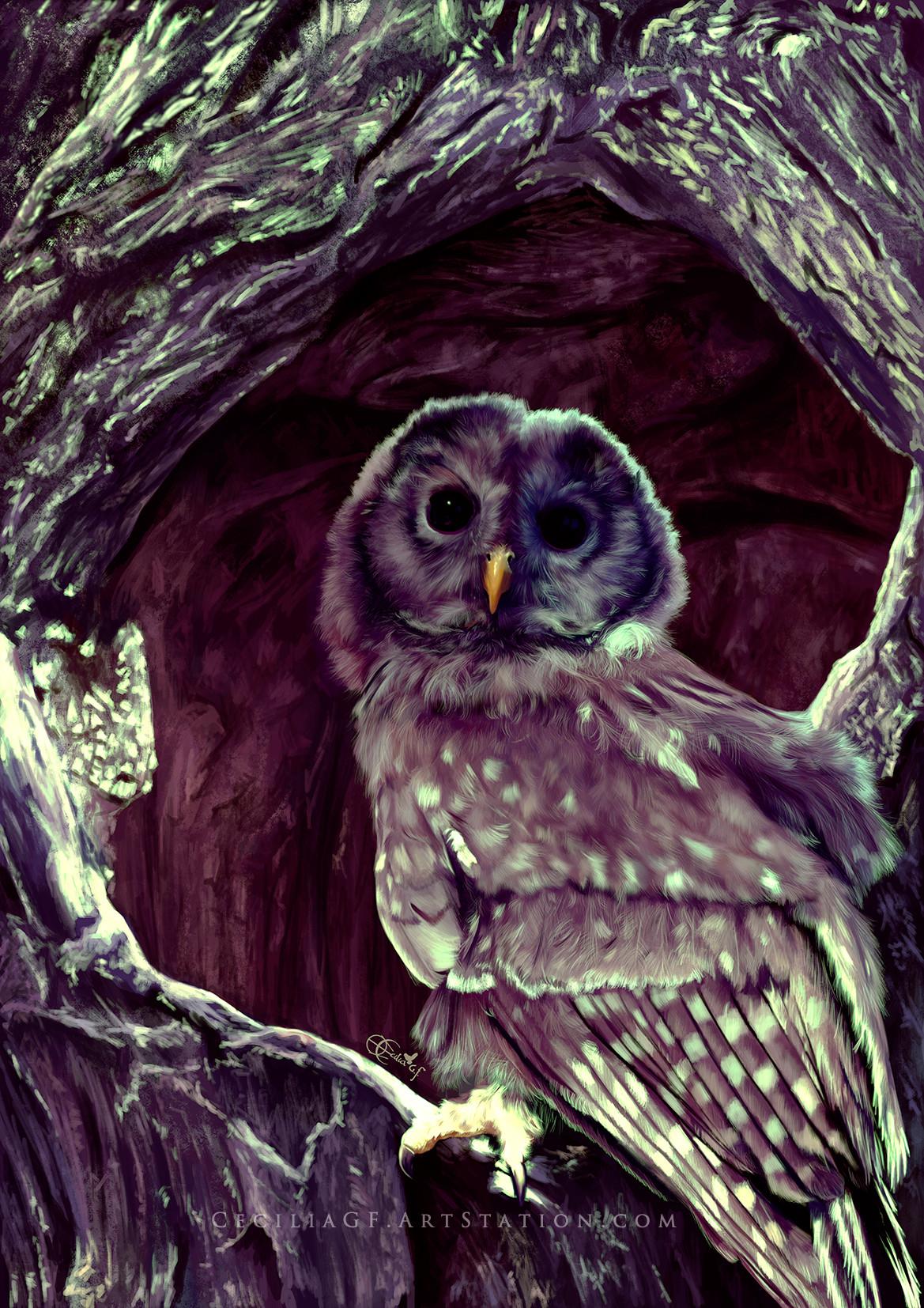 Cecilia g f owl5