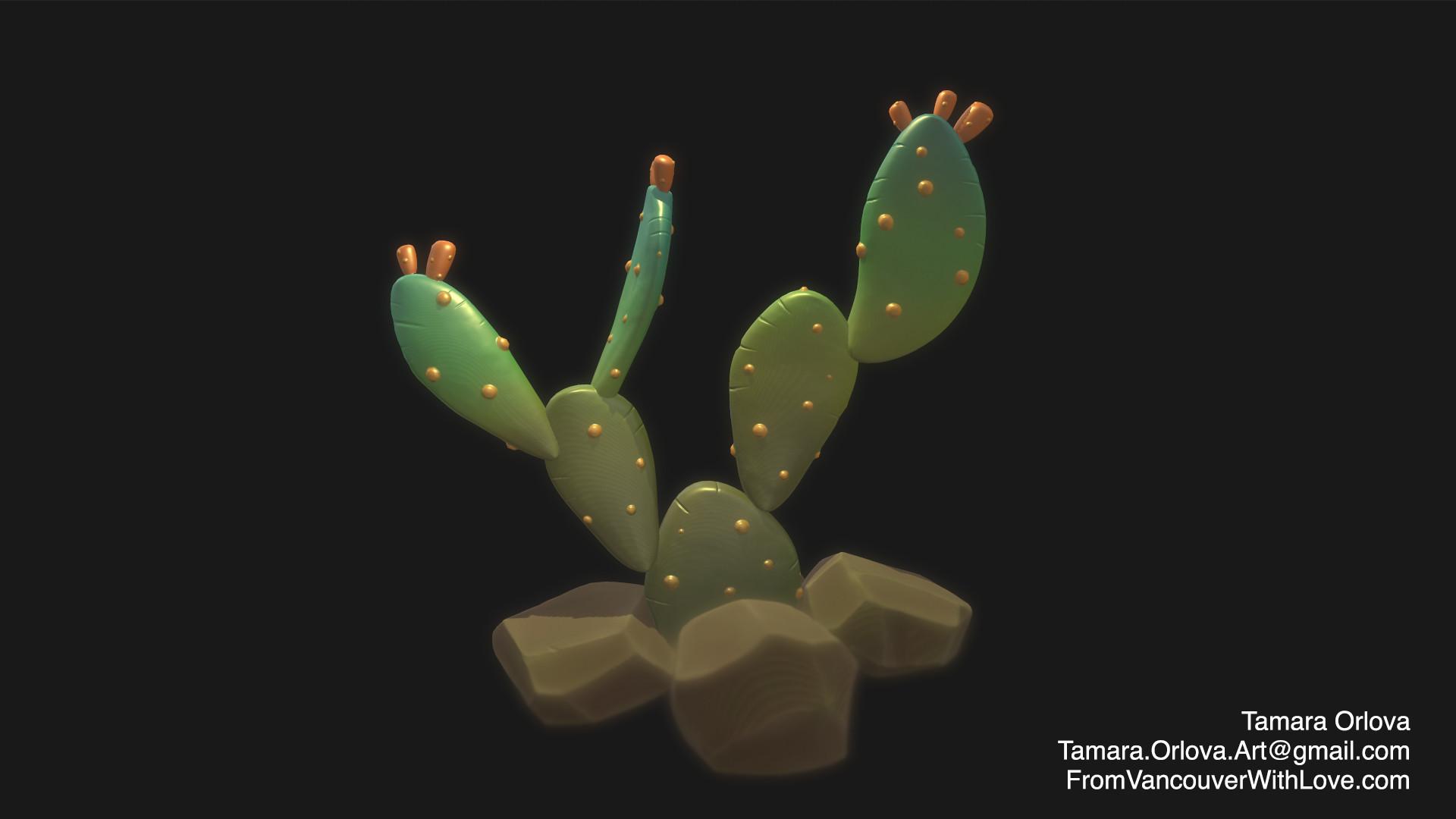Tamara orlova cactus rabbit