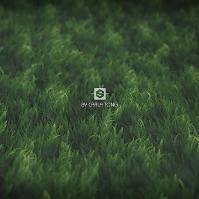 Carla tang stylized grass wallpaper