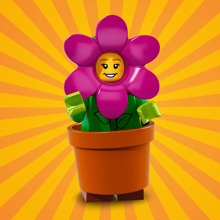 Flower Hat and Pot