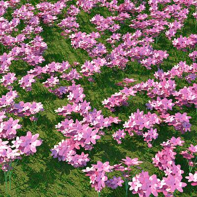 Rahul raj flowers
