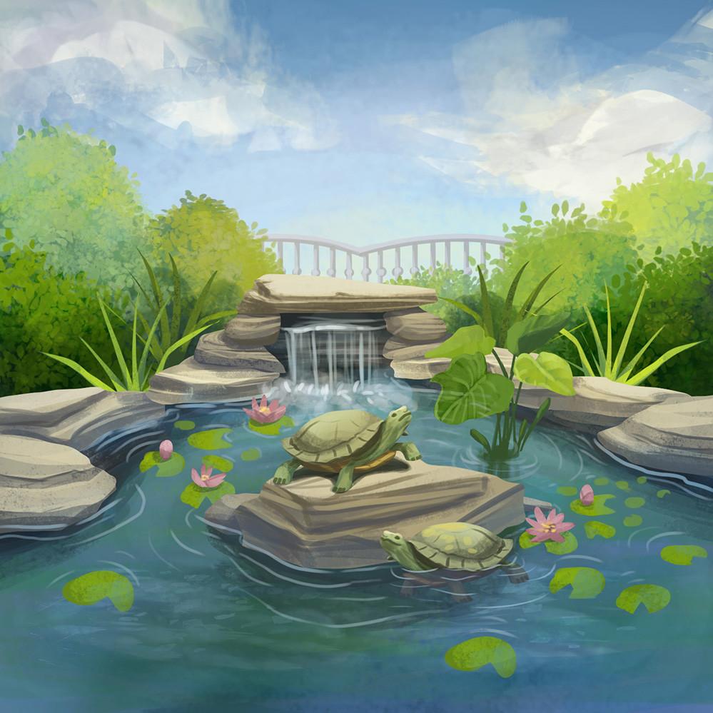 Agnieszka anez dabrowiecka outdoor turtle pond