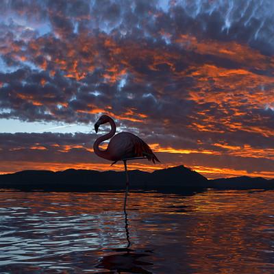 Hadi beheshti flamingo rendering by hadi beheshti