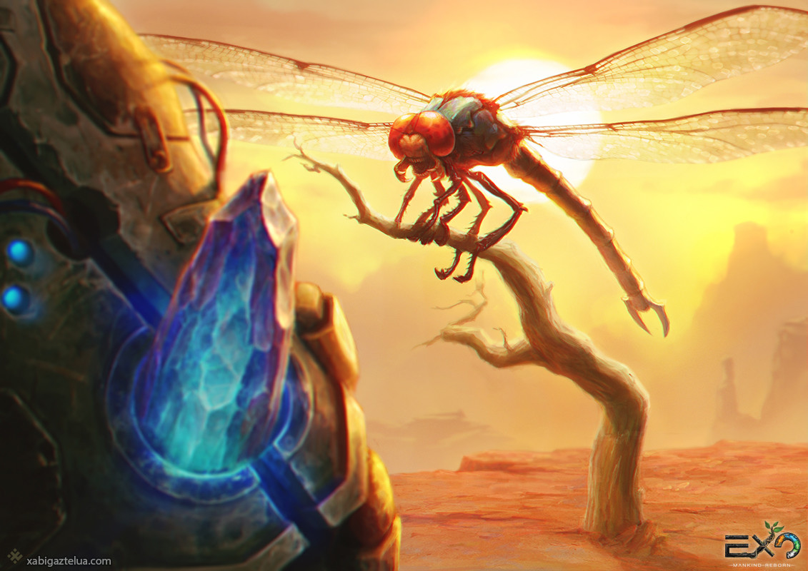 Xabi gaztelua dragonfly vs oz low