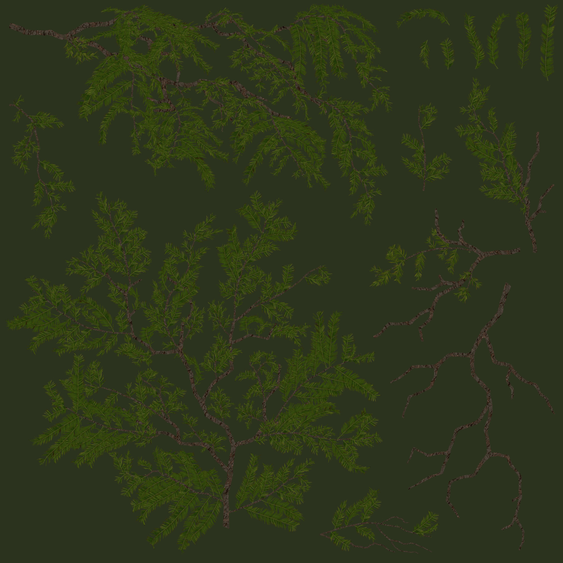 Agnieszka nogalska branches albedo