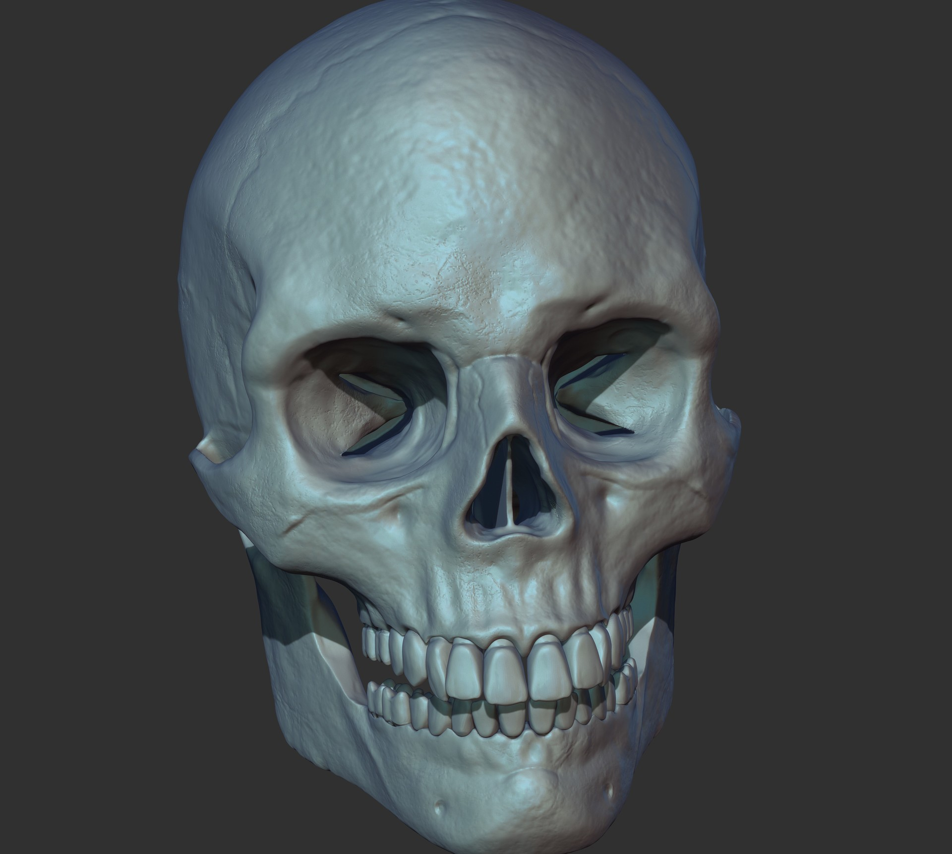 Marcos palante human skull 3d ready to print 3d model obj ztl