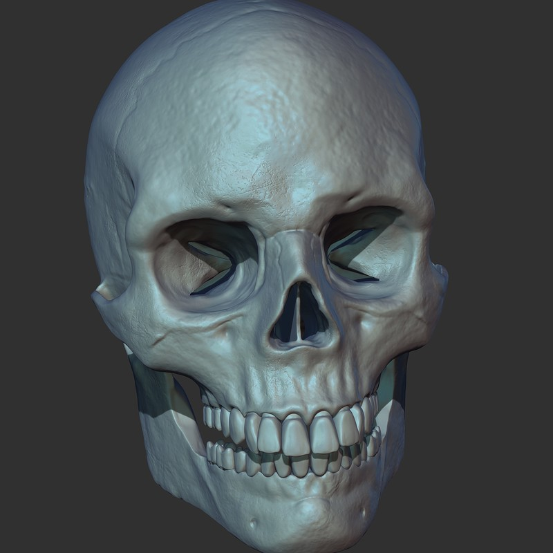 Printable Skull
