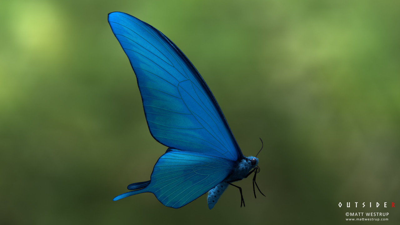 Character ark butterfly 02