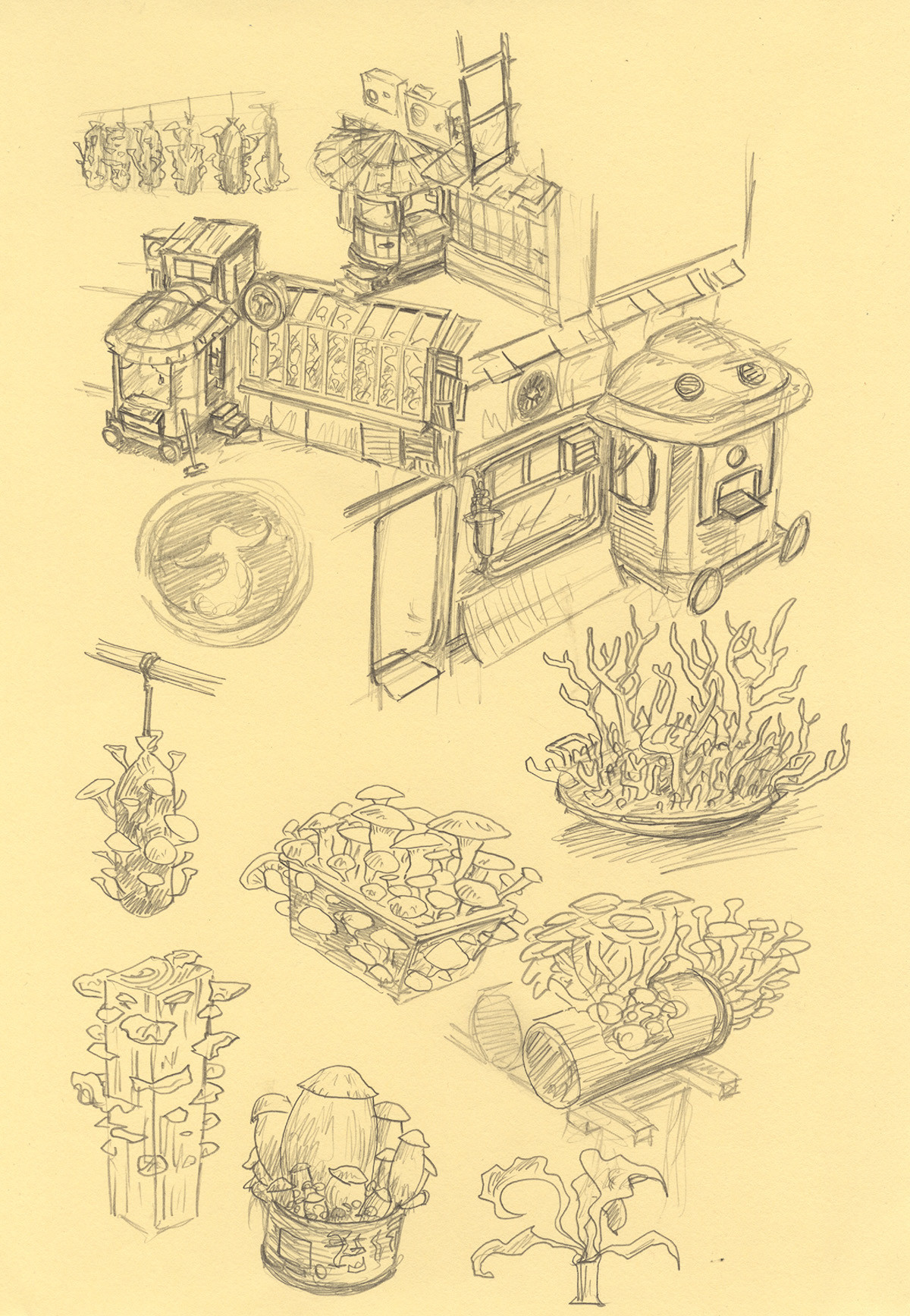 The mushroom shop concept drawing