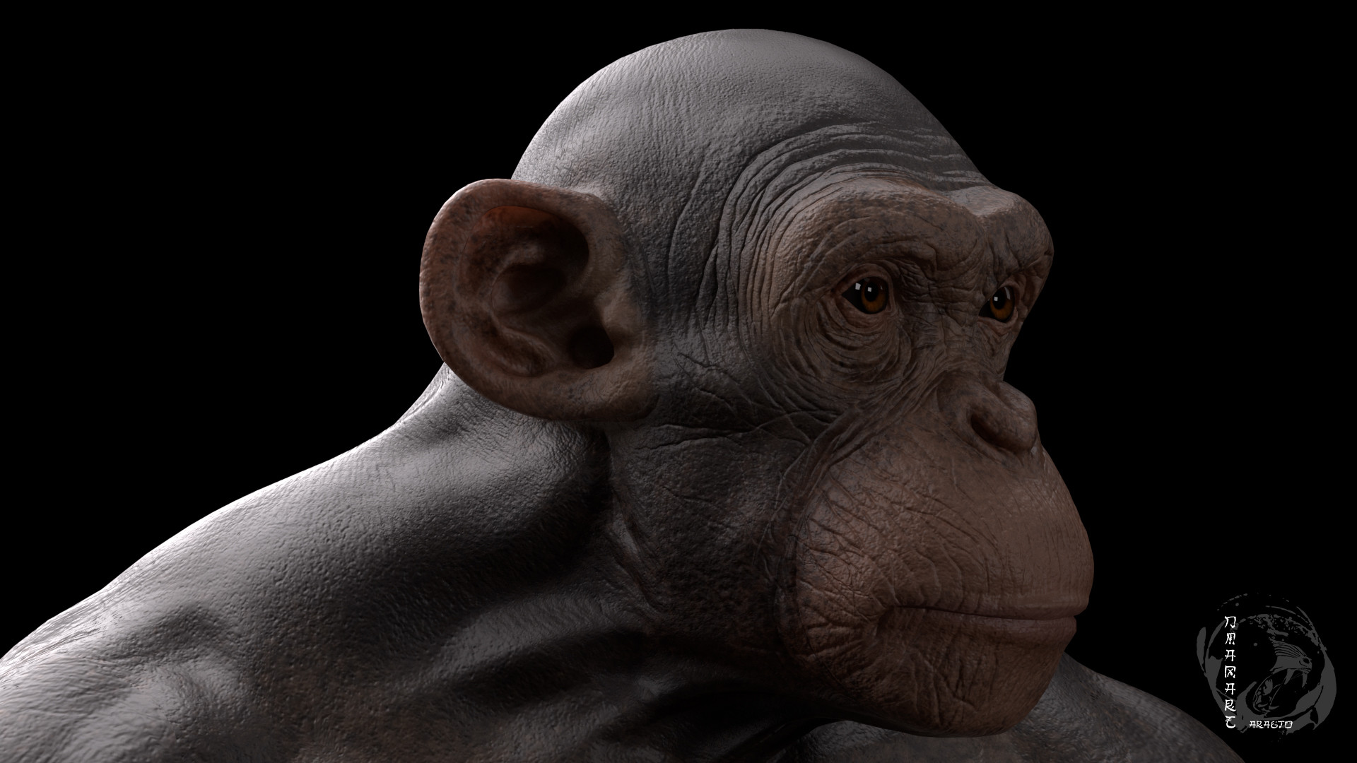 Dimax esteban araujo chimp render6
