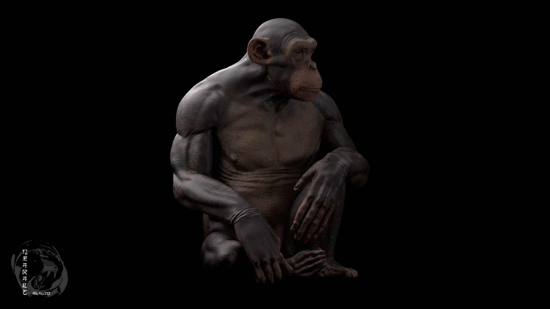 Dimax esteban araujo chimp render2