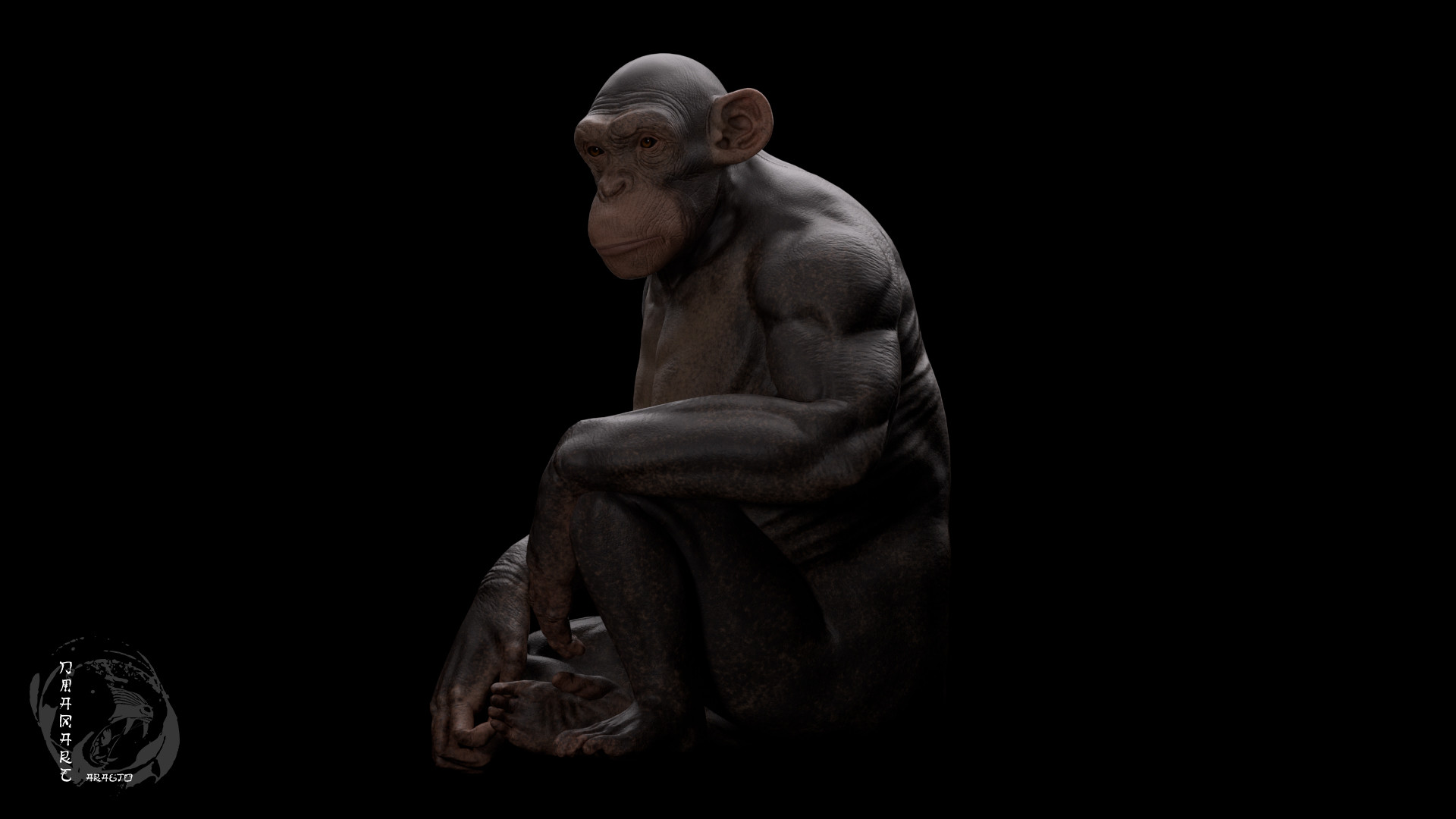 Dimax esteban araujo chimp render3