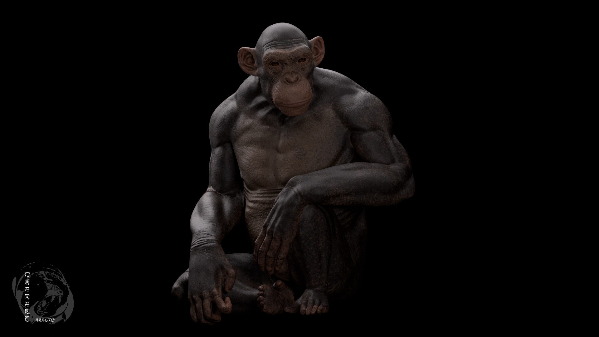 Dimax esteban araujo chimp render4