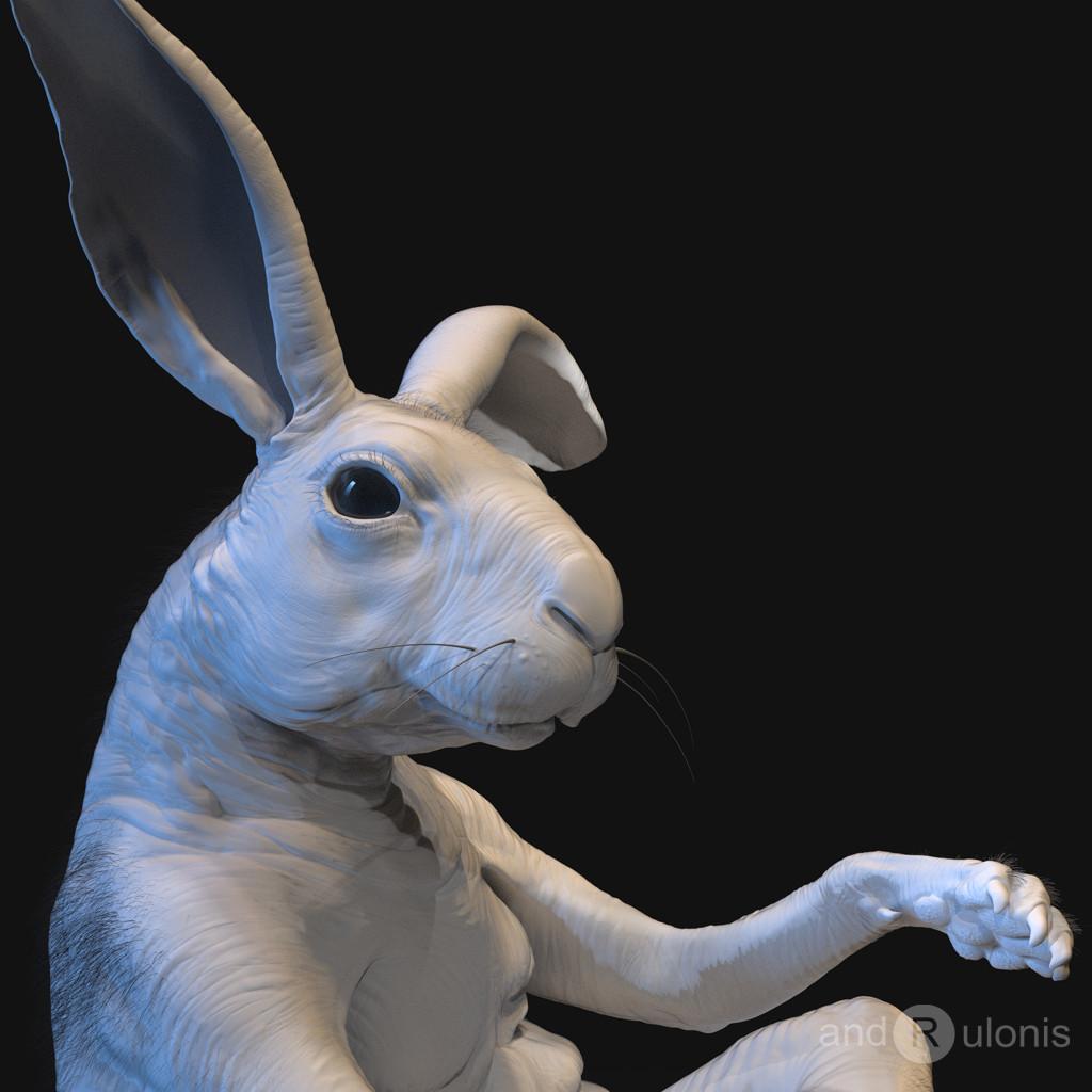 Dariusz andrulonis 07 bunny buddy