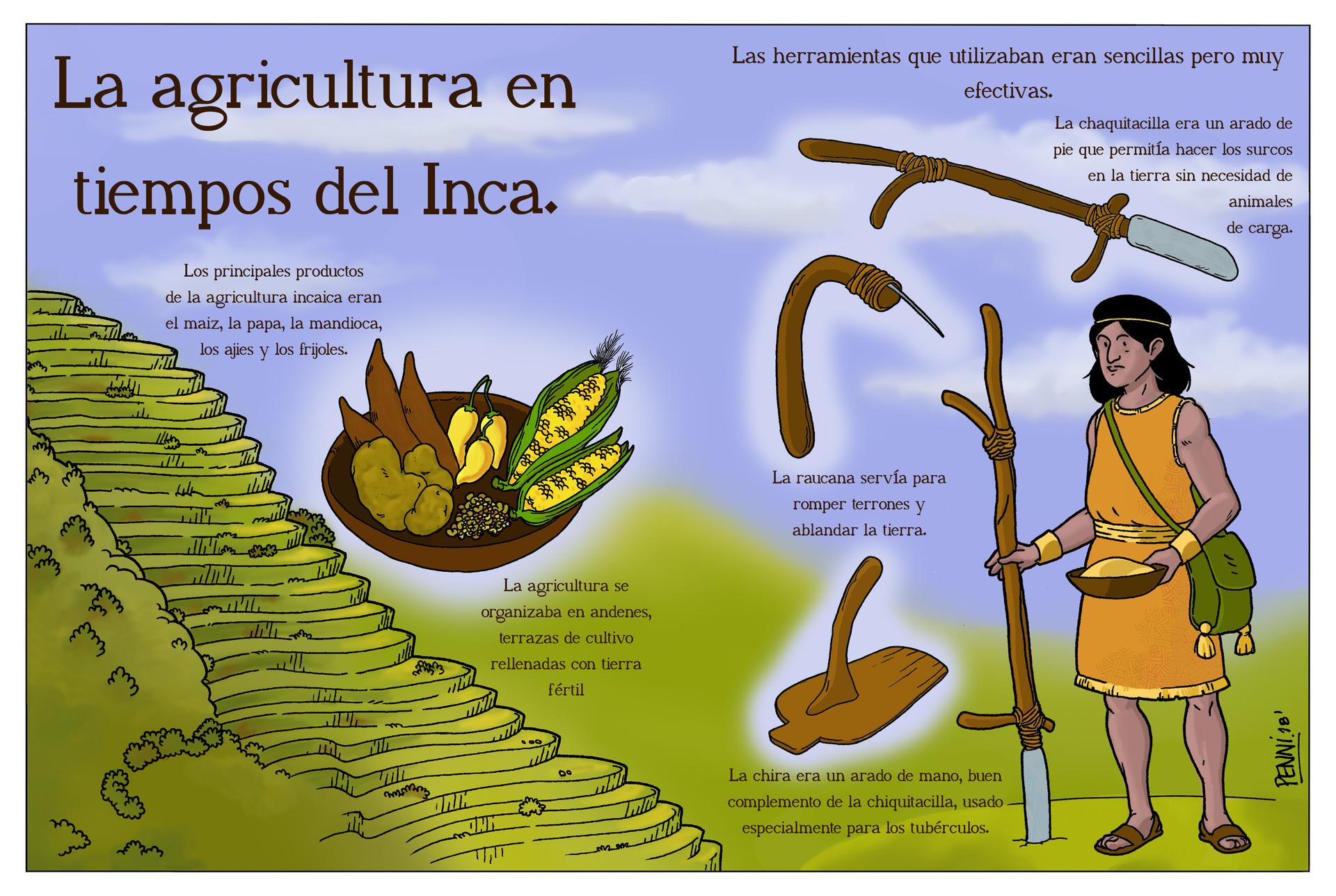 Artstation La Agricultura En Tiempos De Inca Alan Pennisi