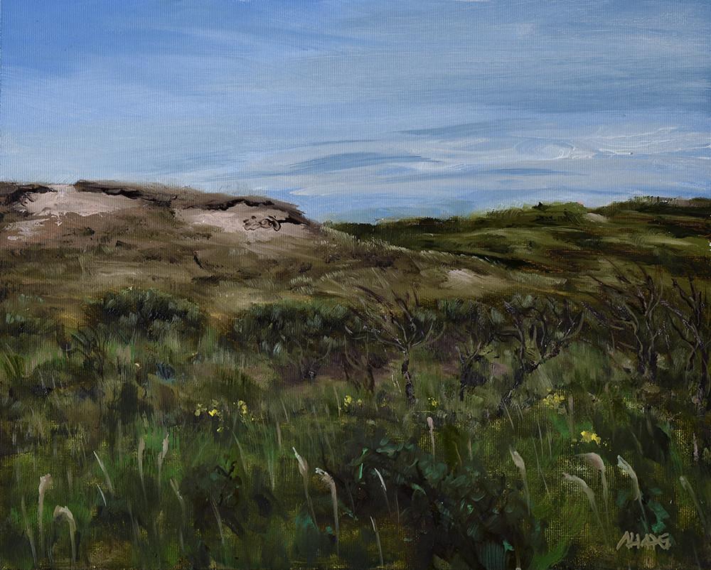 Arthur haas dunes small