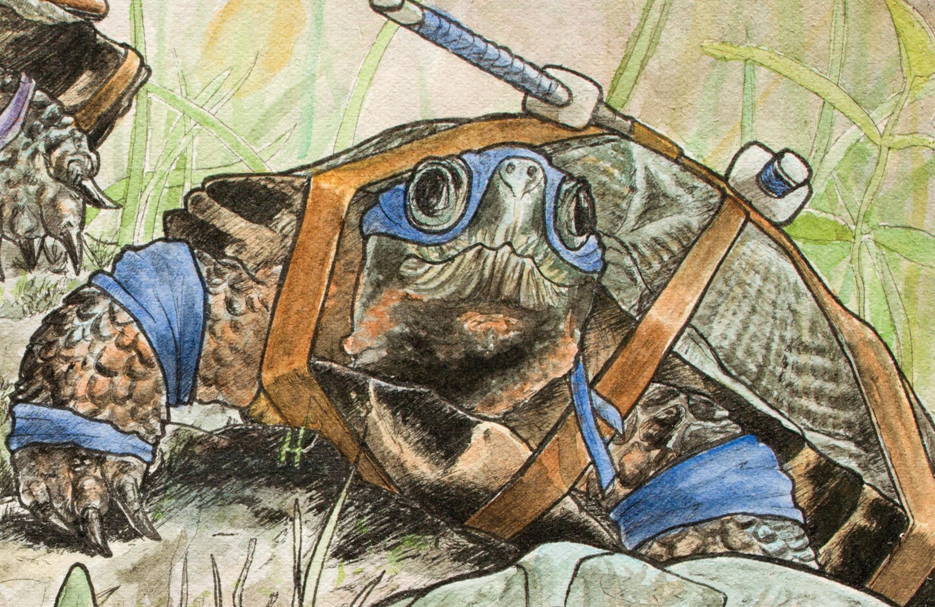 Graham moogk soulis moogk soulis turtles leo
