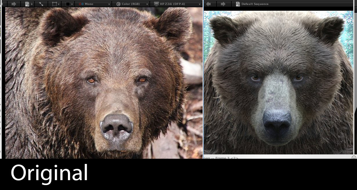 Luis carrasco rvt bear front original