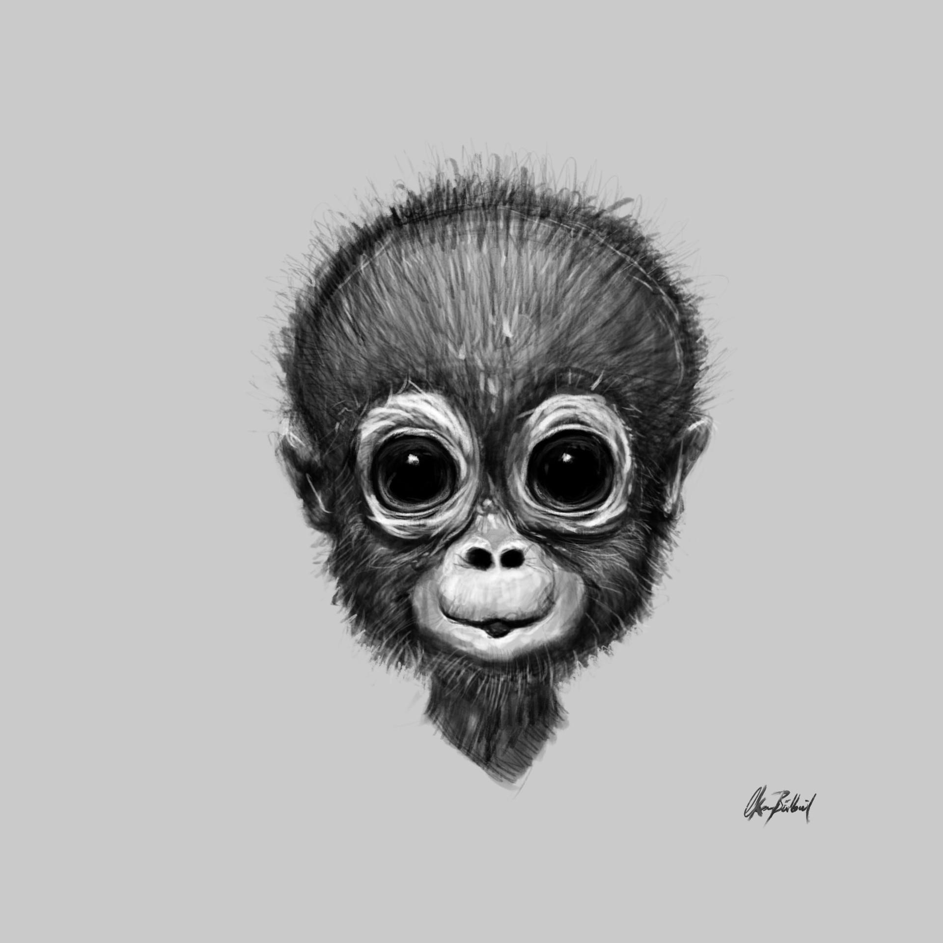 Okan bulbul monkey portrait001