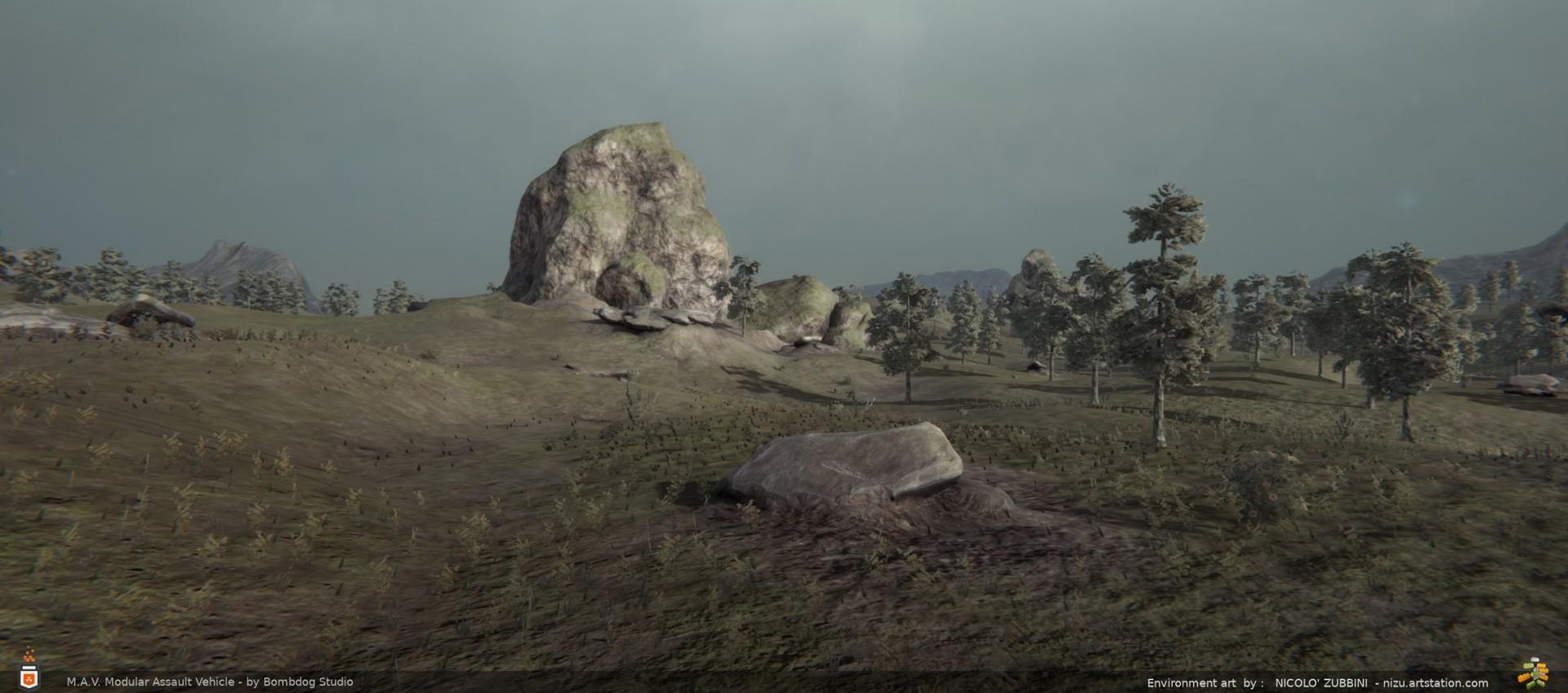 Nicolo zubbini forest5