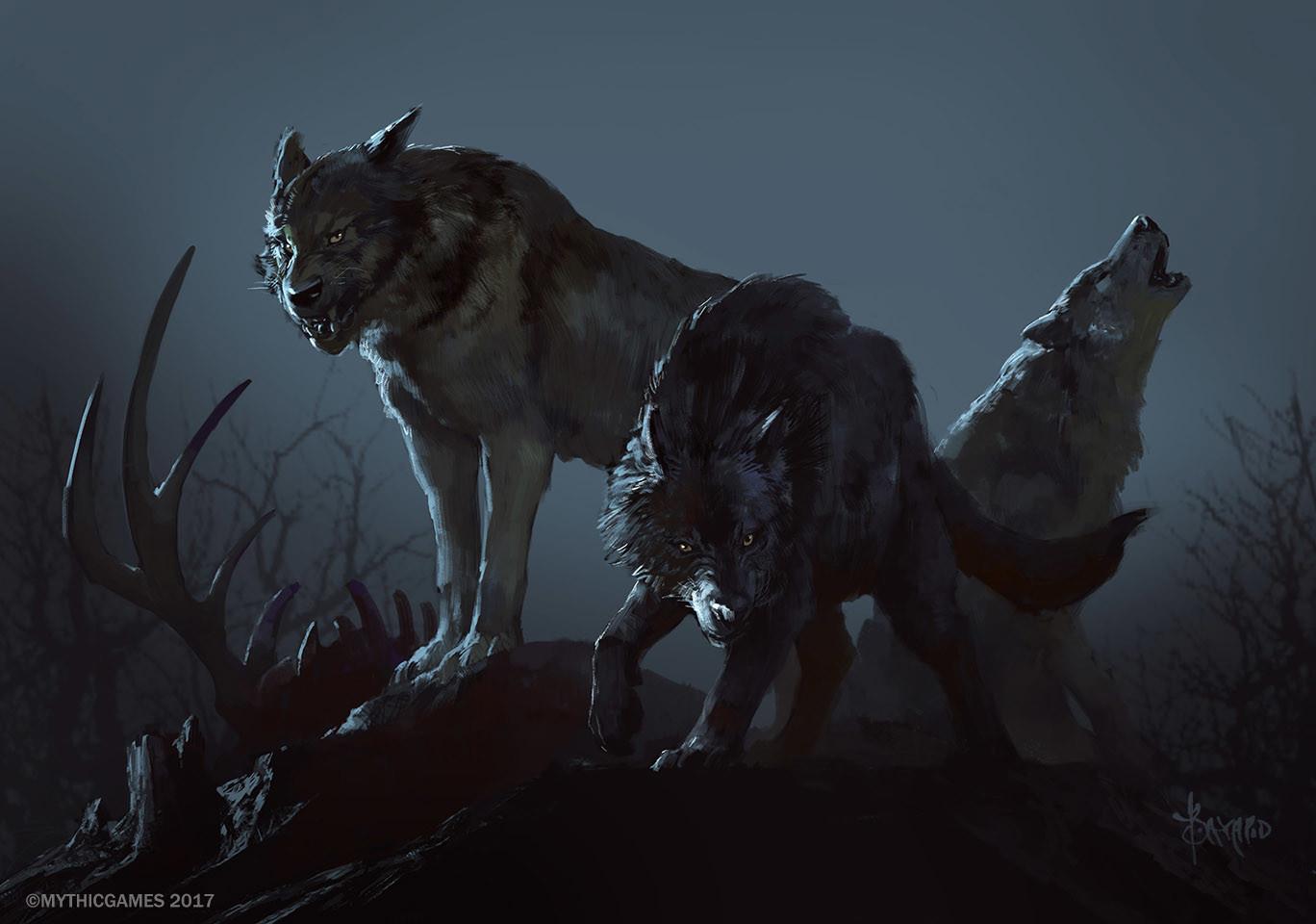 Bayard wu wolf pack 02